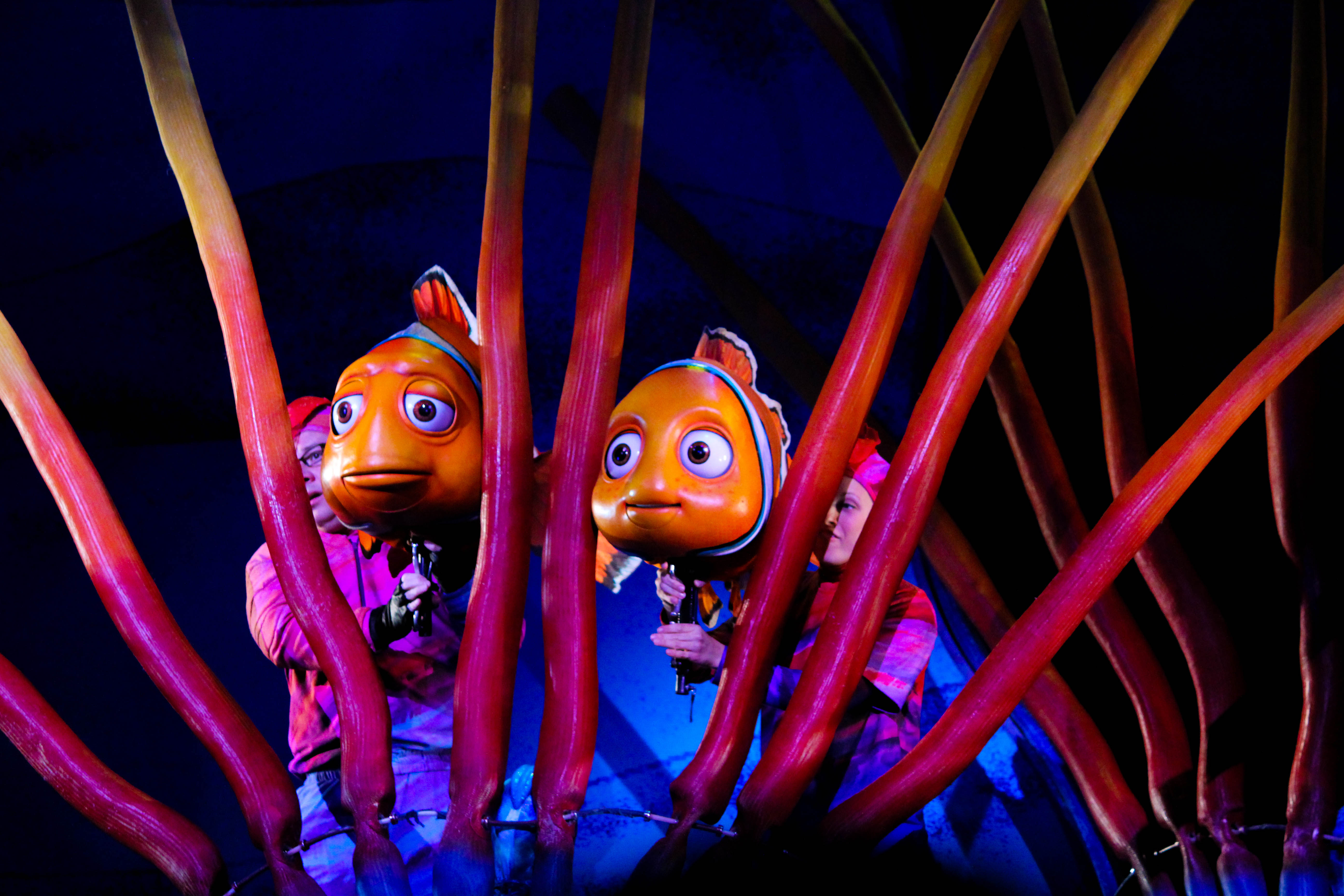 Finding Nemo - The Musical - Sparkly Ever After