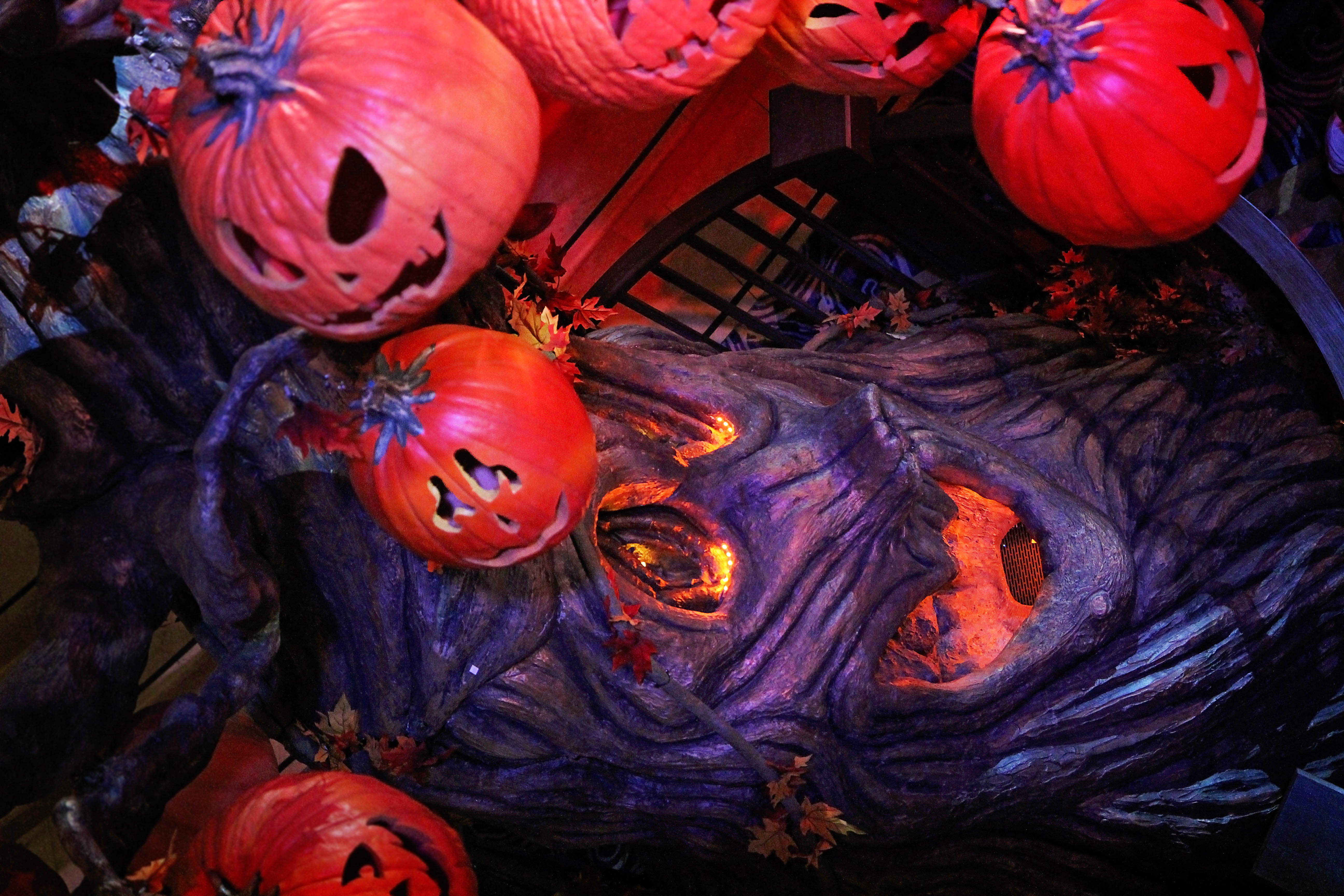 Disney Cruise Line Halloween Photos Sparkly Ever After